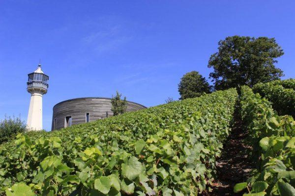 Il Faro di Verzeney e il Museo del Vino © France.fr